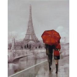 Reprodukce obrazu 20x25 - Paříž za deště