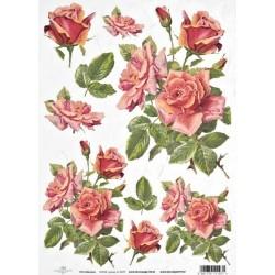 Papír rýžový A4 Růže červené s poupaty