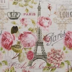 Reprodukce obrazu 20x20 - Pařížské růže