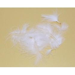 Peříčka Marabu, 10ks v sáčku, bílé