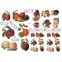 Papír A4 Ovoce na džemy ITD