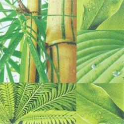 Bambus a listy 33x33