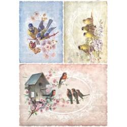 Papír rýžový A4 Ptáčci na větvičkách