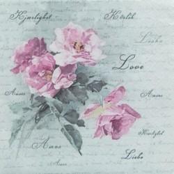 Divoká růže 33x33