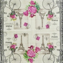 Paris a kolo s košíkem 25x25