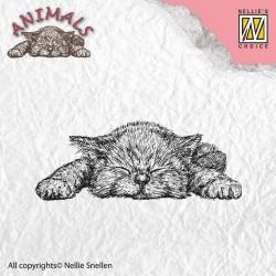 Transp.razítko Kotě (Nellie Snellen)