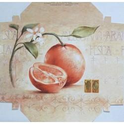 Reprodukce k natažení 20x20 - pomeranč