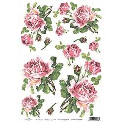 Papír rýžový A4 Růže růžové s poupaty