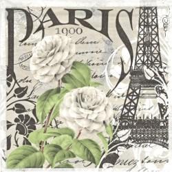 Paris 1900 33x33