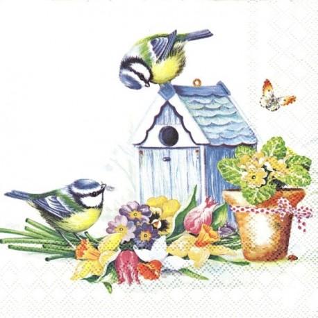 Jarní čas s ptáčky 33x33