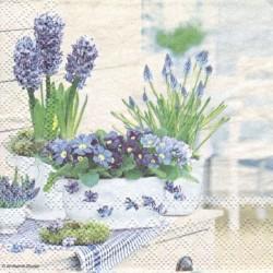 Jarní kytičky 25x25
