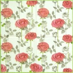 Růže se stonky 33x33