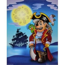 Reprodukce obrazu 24x30 - pirát