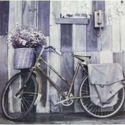 Reprodukce obrazu 25x25 - Lavender Theme IV