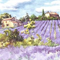 Levandulové pole a domy 33x33