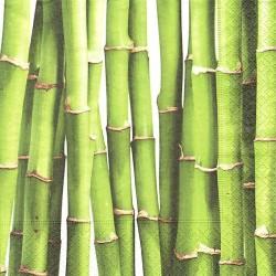 Zelený bambus 33x33