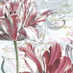 Tulipány žíhané 33x33