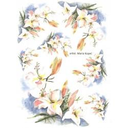 Papír rýžový A4 Lilie