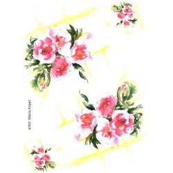 Papír rýžový A4 Šípková růže