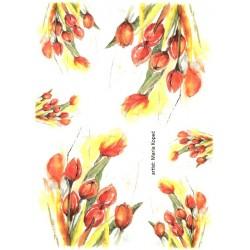 Papír rýžový A4 Tulipány