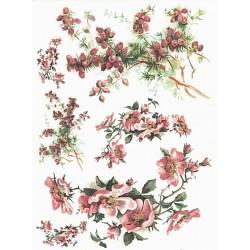 Papír rýžový A4 Šípková růže a větvičky tisu