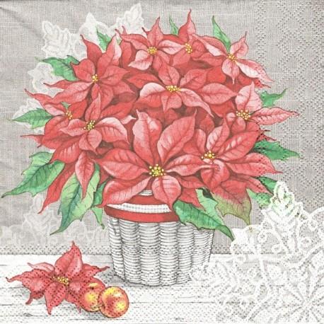 Vánoční hvězda v košíku 33x33