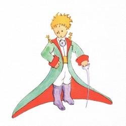 Reprodukce obrazu 20x20 - Malý princ (A)