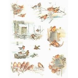 Papír rýžový A4 Zimní obrázky s ptáčky II.