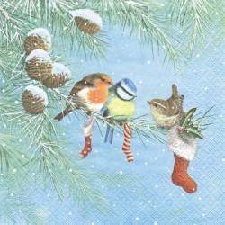 Ptáčci a vánoční ponožky 33x33