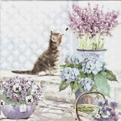Koťátko a květiny 33x33