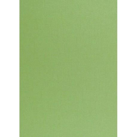 Karton 220g A4 - ražba plátno, perleť, Lime