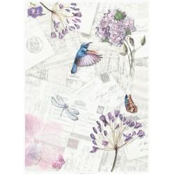 Papír rýžový A4 Dopisy, kolibřík, květy a hmyz