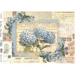 Rýžový papír A4 Hortenzie, Carte Postale