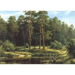 Reprodukce obrazu 18x13 - Tmavý les