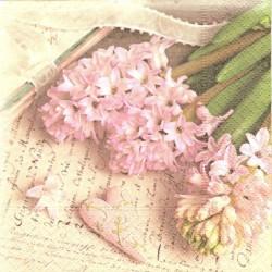 Růžové hyacinty 25x25