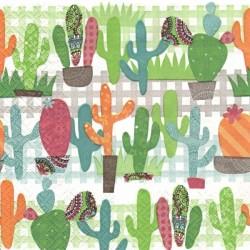 Kaktusy 33x33