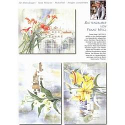 Papírové výřezy 3D - Lilie, Franz Heigl (2 listy)