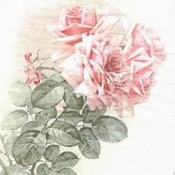 Větvička růže 33x33