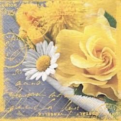 Žlutá růže a kopretina 33x33