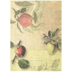Papír rýžový A4 Jablka