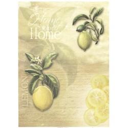 Papír rýžový A4 Citrony