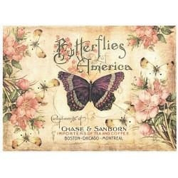 Papír rýžový A4 Motýli a květy, text