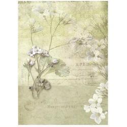 Papír rýžový A4 Polní květina, na pozadí písmo