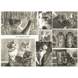 Papír rýžový A4 Kočičky