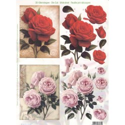 Papírové výřezy 3D - Červená a růžová růže