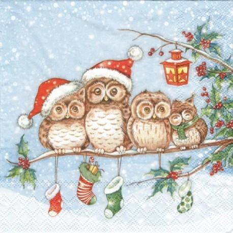 Soví rodina o Vánocích 33x33