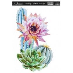 Transfer Cadence 17x25 - Kvetoucí kaktus