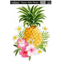 Transfer Cadence 17x25 - Ananas