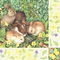 Čtyři králíčci 33x33