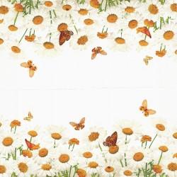 Kopretiny a motýlci 33x33